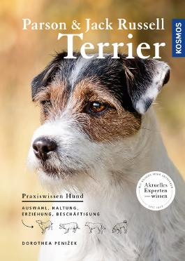 Parson und Jack Russell Terrier