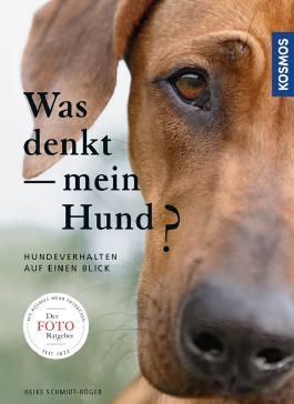 Was denkt mein Hund?: Hundeverhalten auf einen Blick