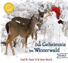 Das Geheimnis im Winterwald