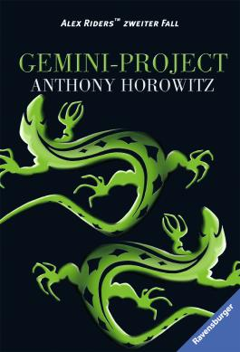 Gemini-Project