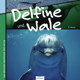 Delfine und Wale