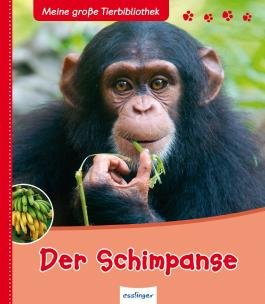 Meine große Tierbibliothek: Der Schimpanse