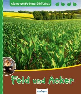 Feld und Acker