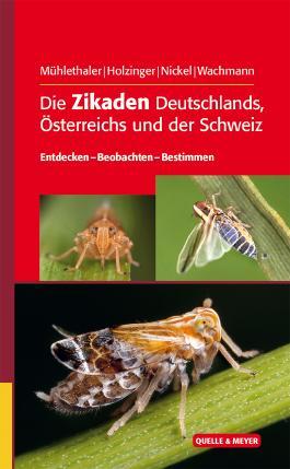 Die Zikaden Deutschlands, Österreichs und der Schweiz