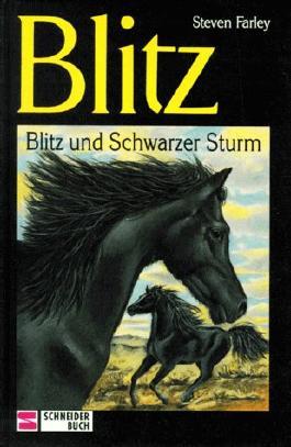 Blitz und Schwarzer Sturm