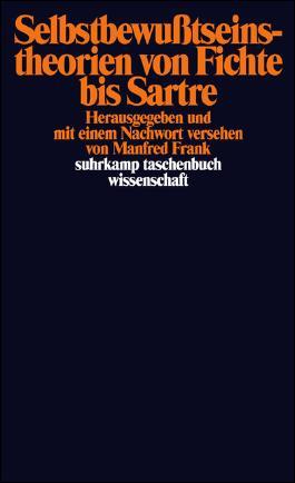 Selbstbewußtseinstheorien von Fichte bis Sartre