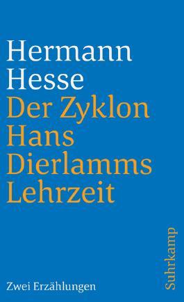 Der Zyklon und Hans Dierlamms Lehrzeit