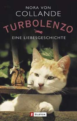 Turbolenzo