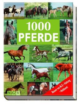 1000 Pferde