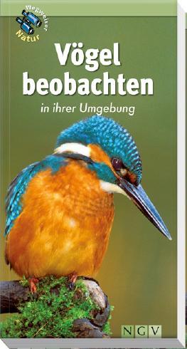 Vögel beobachten in ihrer Umgebung