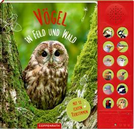 Vögel in Feld und Wald