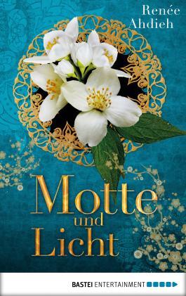 Motte und Licht