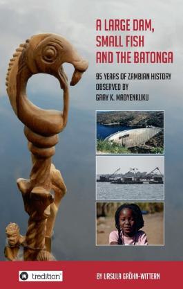 A Large Dam, Small Fish and the BaTonga
