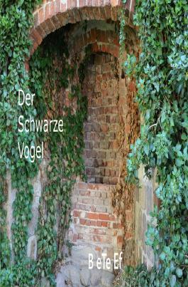 Romanreihe / Der Schwarze Vogel