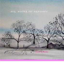 Der Winter ist draußen - Kinderbuch