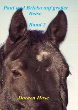 Paul und das wilde Pferd / Paul und Brieko auf große Reise (Band 2)