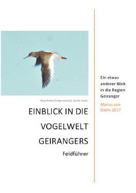 Einblick in die Vogelwelt Geirangers