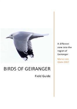 Birds of Geiranger