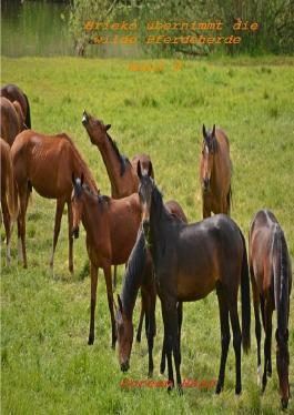 Paul und das wilde Pferd / Brieko übernimmt die wilde Pferdeherde
