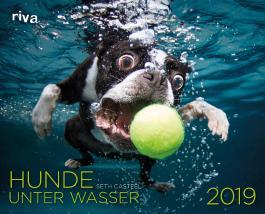 Hunde unter Wasser 2019