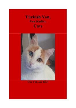 Türkish Van, Van Kedisi, Cats