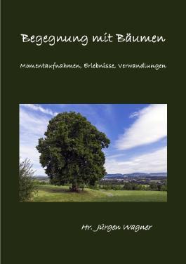 Bäumen begegnen / Begegnung mit Bäumen