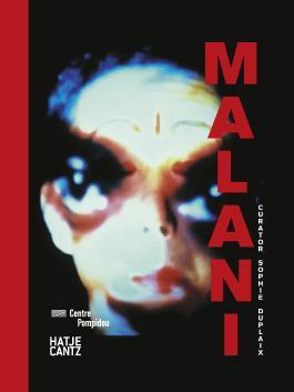 Nalini Malani