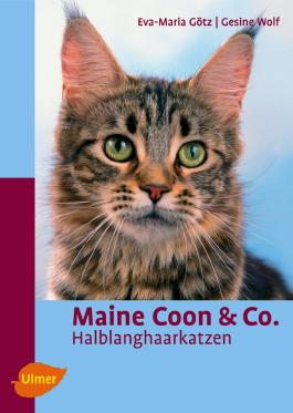 Maine Coon & Co.
