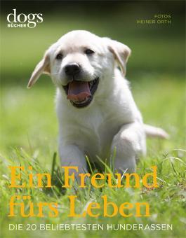 DOGS. Ein Freund fürs Leben