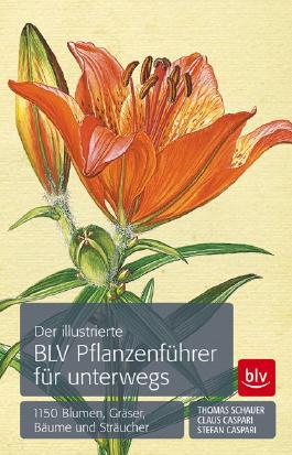 Der illustrierte BLV Pflanzenführer für unterwegs