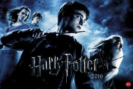 Harry Potter Broschur XL 2016