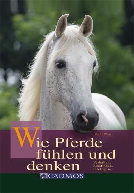 Wie Pferde fühlen und denken