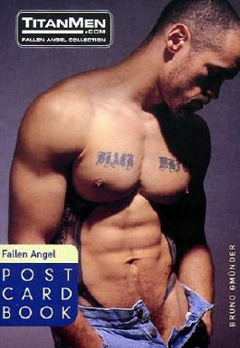 "Best of ""Fallen Angel"" (Postcard Books (Bruno))"