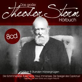 Das große Theodor Storm Hörbuch, 8 Audio-CDs