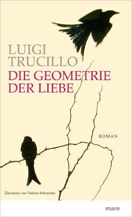 Die Geometrie der Liebe