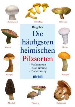 Die häufigsten heimischen Pilzsorten