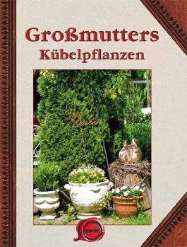 Großmutter Kübelpflanzen SA