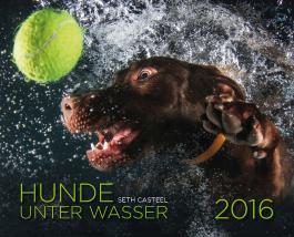 Hunde unter Wasser 2016