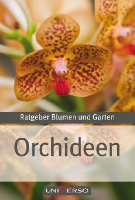 Ratgeber Garten - Orchideen