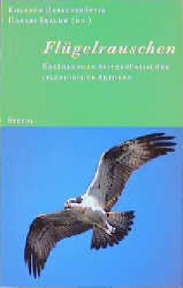 Flügelrauschen