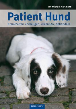 Patient Hund