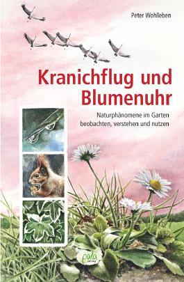 Kranichflug und Blumenuhr