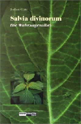 Salvia Divinorum - Die Wahrsagesalbei