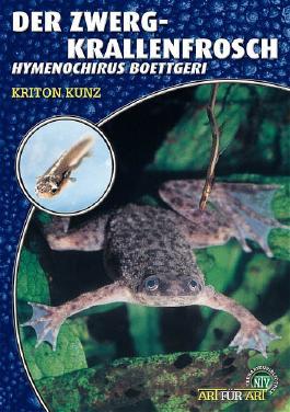 Der Zwergkrallenfrosch
