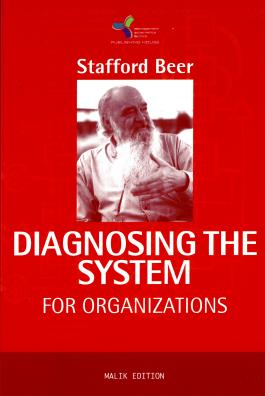 DIAGNOSING THE SYSTEM For Organisations