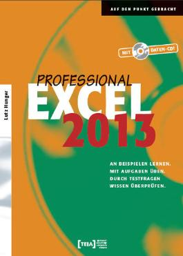 Excel 2013 Professional