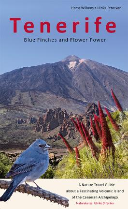 Tenerife - Blue Finches and Flower Power