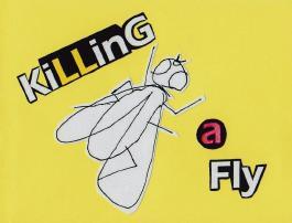 Killing A Fly