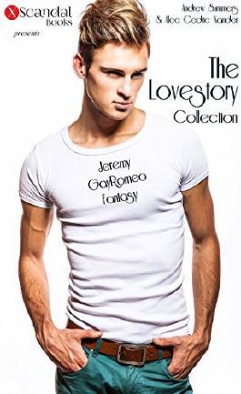 The Lovestory Collection: Jeremy / GayRomeo / Fantasy - Der Mann meiner Träume