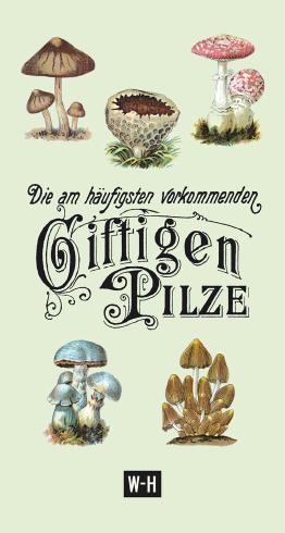 Die am häufigsten vorkommenden giftigen Pilze